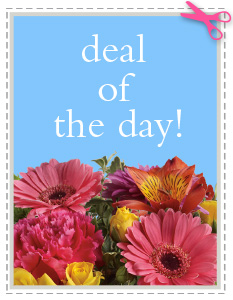 Deal of the Day in Oakland MD, Jan Florist